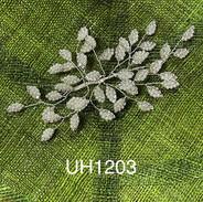 UH1203.jpg