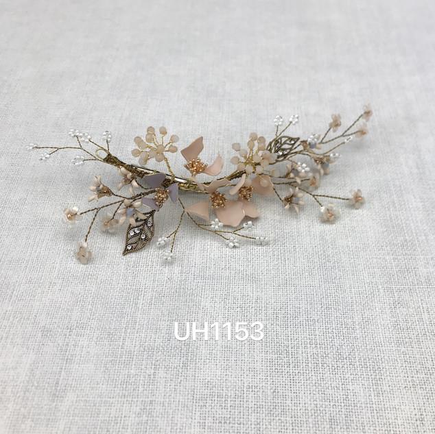 UH1153.jpg