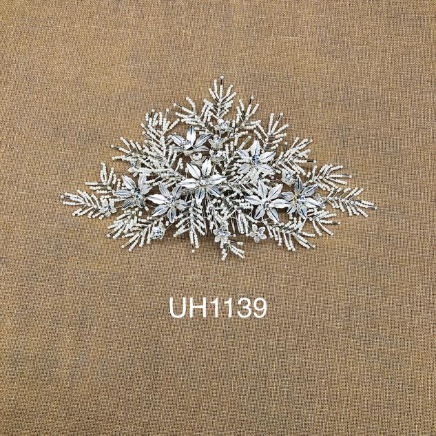 UH1139.jpg
