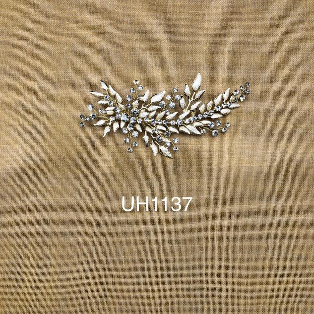 UH1137.jpg