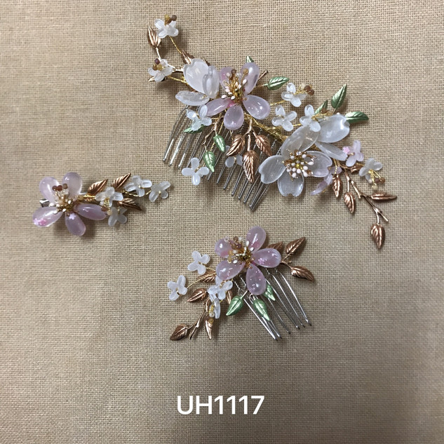 UH1117.jpg