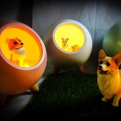 LED檯燈&小夜燈