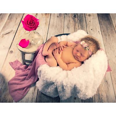 Jarelys Newborn