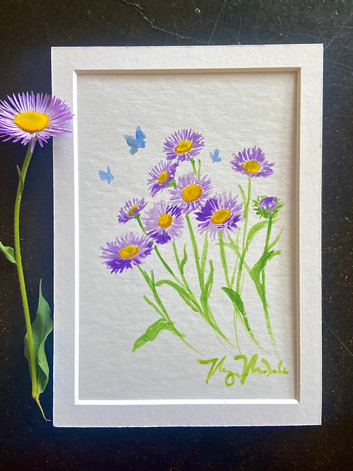 Aster Flower Study - Original Painting