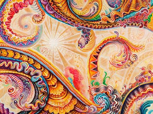 Dakha Brakha Honey Bucket Afro Beat ~ Paper Print