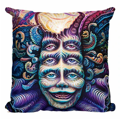 Shpongled Pillow