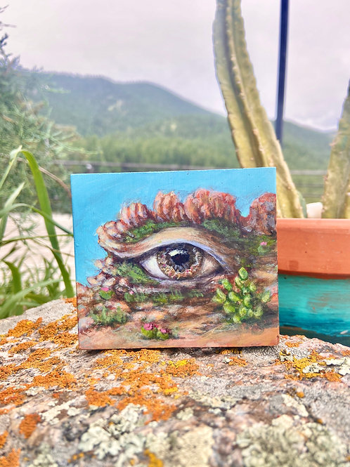 Desert Eyescape - Original Painting