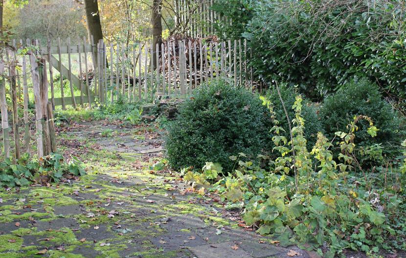Het groene geraamte van de tuin - deel I