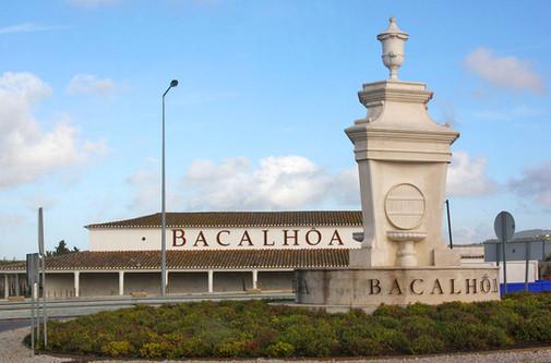 AZEITÃO - ADEGA BACALHÔA