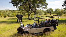 ULUSABA safari