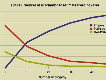 Genomic Estimated Breeding Values