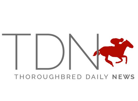 How Predictive is the TDN 'Rising Star'?