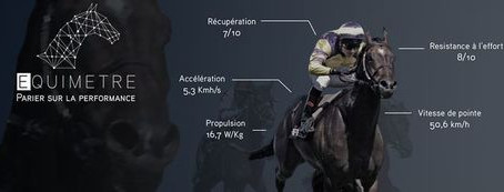 Using Artificial Intelligence in Horse Training