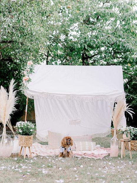 Romeo tent.JPG