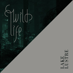 Wild Life - Lake Lustre