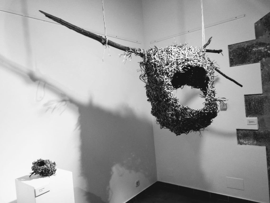 nest Rectoria Vella 2019.jpg