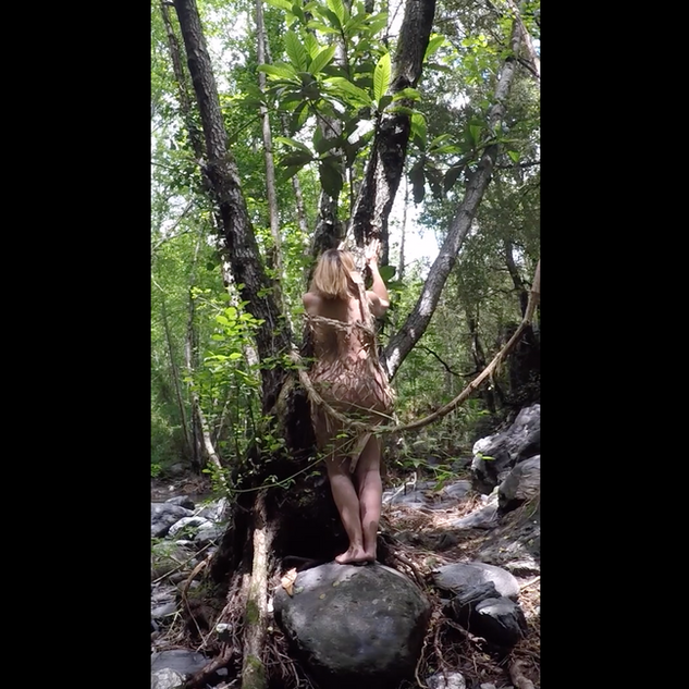 Woman-Tree 5.png
