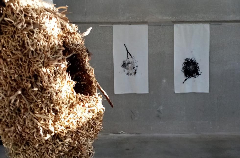 Nest finished 1.jpeg