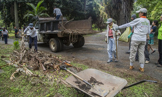 Voluntarios rescatan el Jardín Botánico con el sudor de su frente
