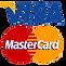 visa_PNG14.png