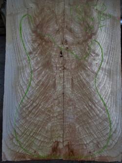 7 Ronce de frêne