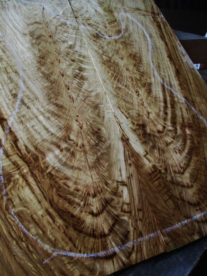 8 Ronce de chêne