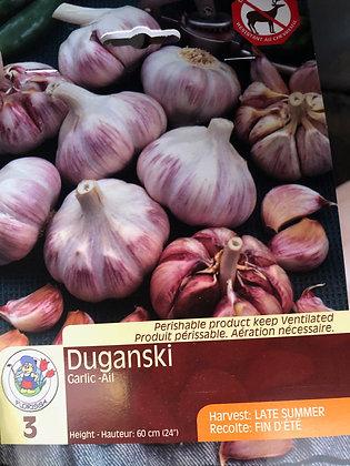 Garlic - Duganski