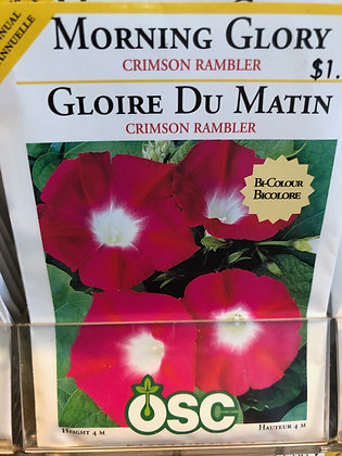 Seed - OSC - Morning Glory Crimson Rambler
