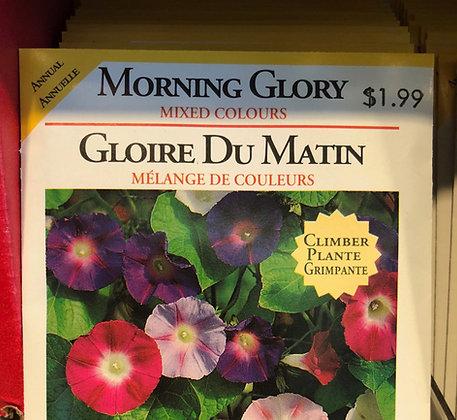 Seed - OSC - Morning Glory Mixed