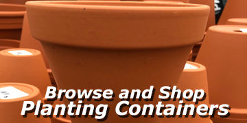Great selection of pots available online at Carleton Place Nursery