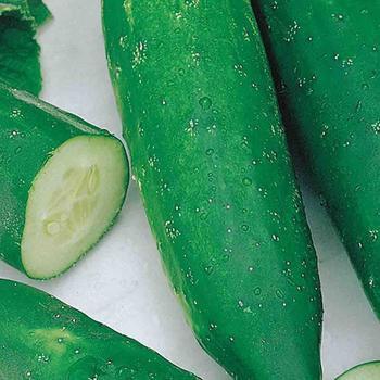 Cucumber Improved Long Gr - McKenzie Organic
