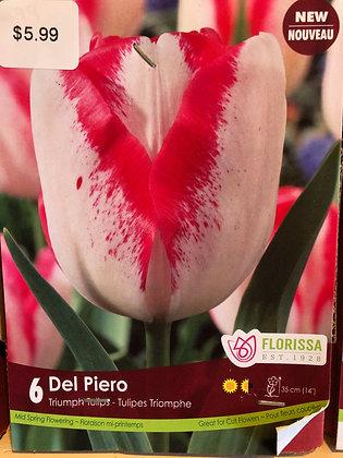 Tulip - Del Piero