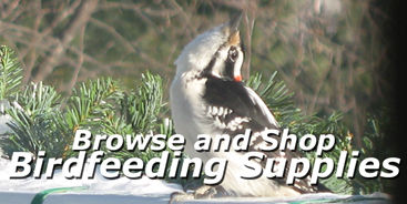 Shop for Birding Supplies at Carleton Place Nursery