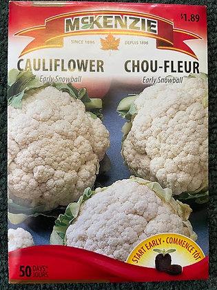 Cauliflower  Early Snowball  -  McKenzie