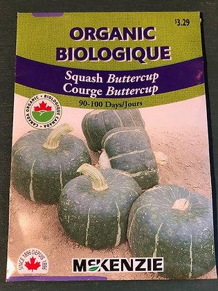 Squash Buttercup  - McKenzie Seed