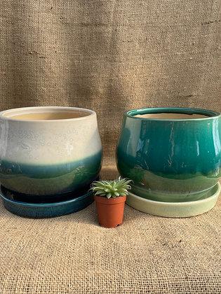 """Ceramic Pot  'Aldo'   6""""  (Select Colour)"""