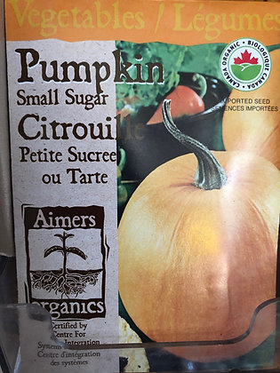 Seed - Aimers Organic - Pumpkin Small Sugar