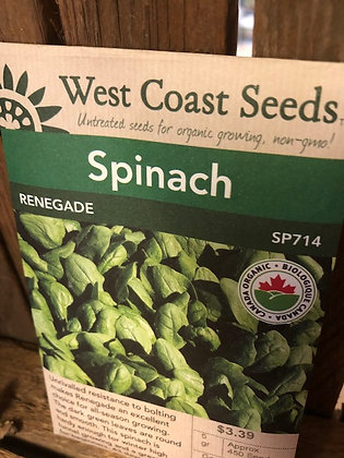 Seed - West Coast -Spinach Renegade