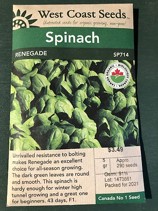 Spinach Renegade  -  West Coast Seed