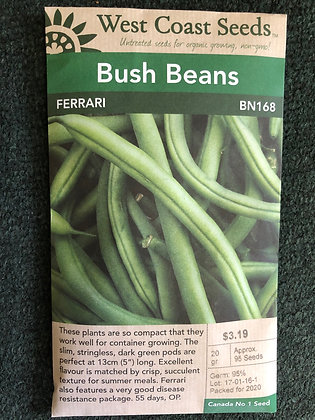 Bean Ferrari  -  West Coast Seed