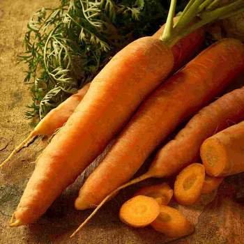 Carrot  Nantes Coreless - McKenzie Organic