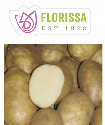 Seed Potatoes - Pacific Russet- 2 kg