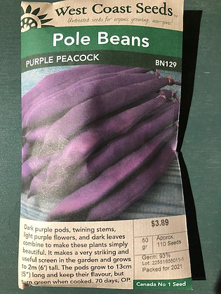 Bean Pole Purple Peacock  -  West Coast Seed