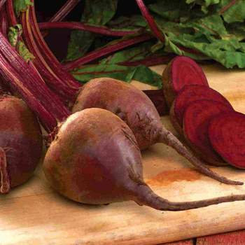 Beet Jumbo Detroit Red - McKenzie Seed
