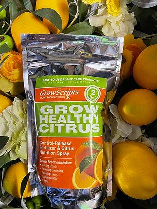 Citrus Essentials Kit  (large)