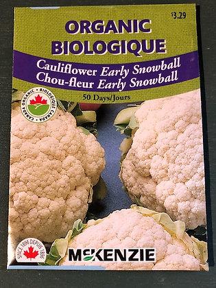 Cauliflower Early Snowball  -  McKenzie  Organic