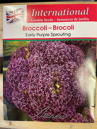 Broccoli Early Purple Sprouting  -  Aimers International