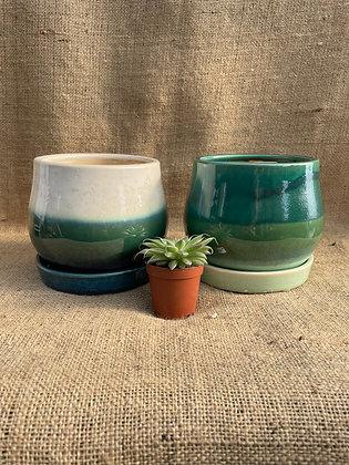 """Ceramic Pot  'Aldo'  4.5""""  (Select Colour)"""