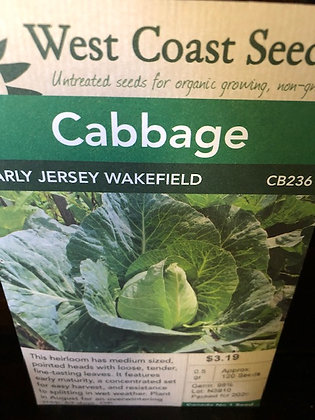 Cabbage Early Jersey Wakefield- West Coast Seed