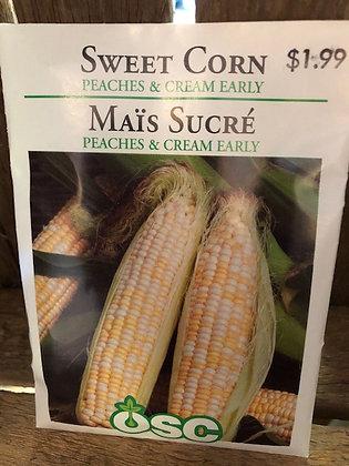 Seed - OSC - Sweet Corn Peaches and Cream Early